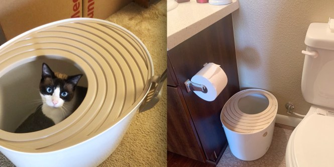 This Unique Litter Box Has Saved Me