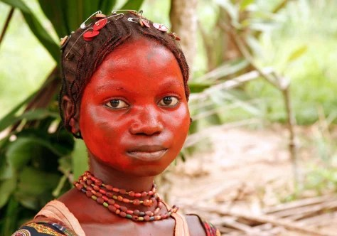 pygmies would trade forests