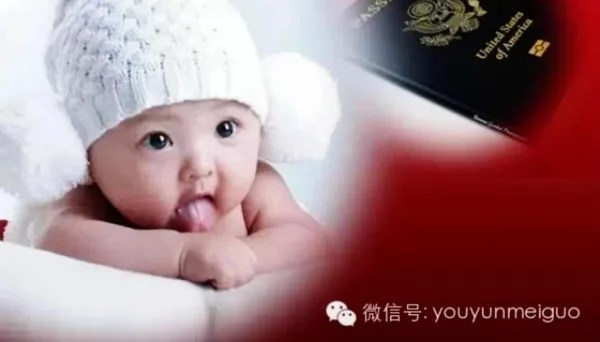 IMAGE: Website allegedly used to recruit Chinese women to come to the U.S. to have their babies