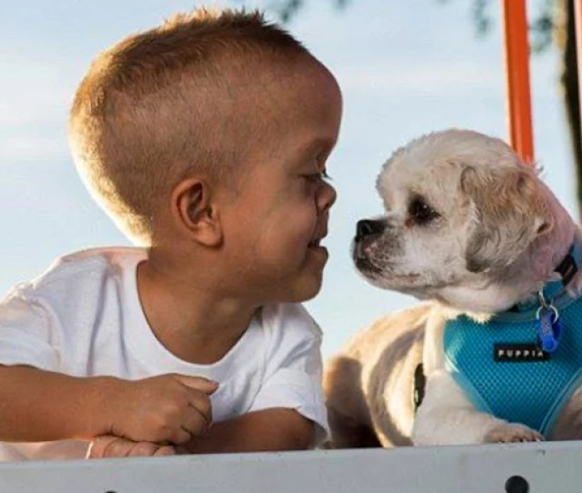 New Dog Helps  Year Old Boy With Dwarfism Stand Tall To Bullies