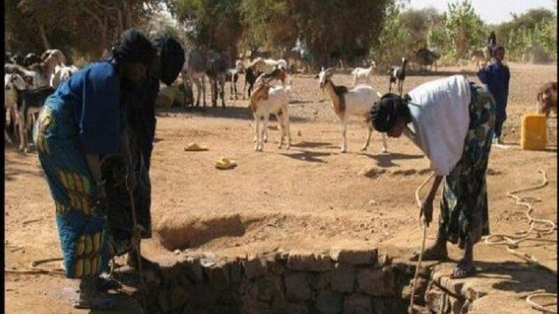 Touba Toul : un corps sans vie d'une femme jeté dans un puits