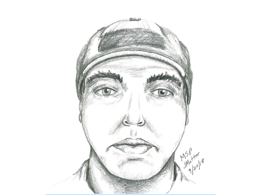 Police release suspect sketch in attempted abduction of a
