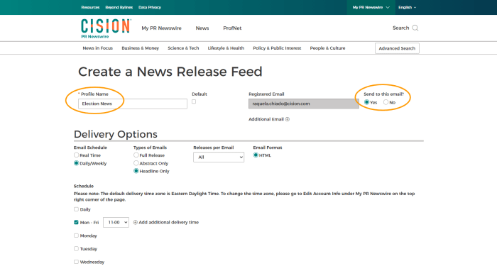 Screenshot of PR Newswire for Journalists Create a News Release Feed
