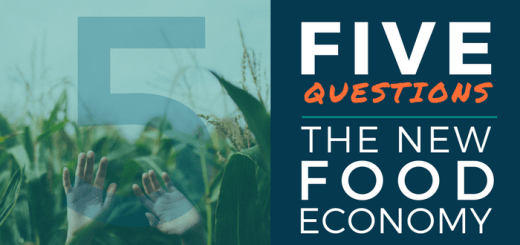 The New Food Economy