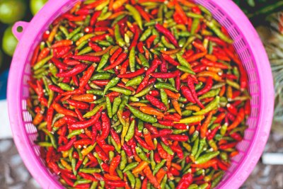 Bowl full of small red, green and orange chile peppers