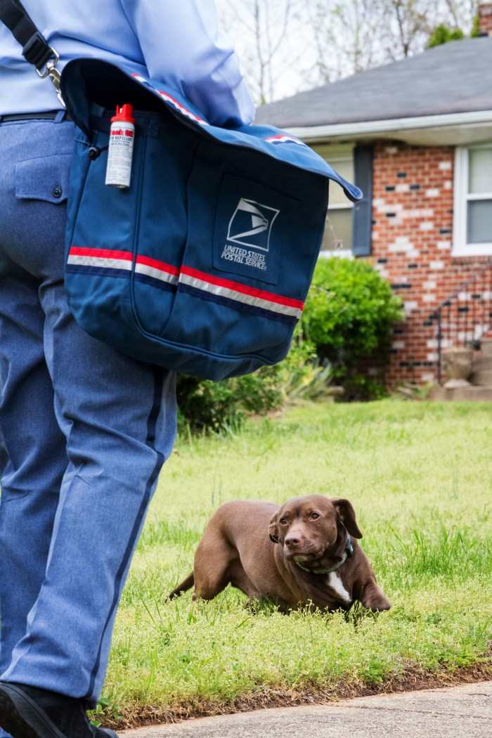 USPS worker and a dog in front of a house