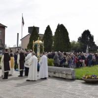 Festa della Madonna di Borbiago, Araldi in Italia (16)-001