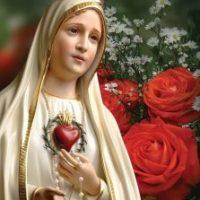 Ano Mariano - Consagre-se a Jesus pelas mãos de Maria