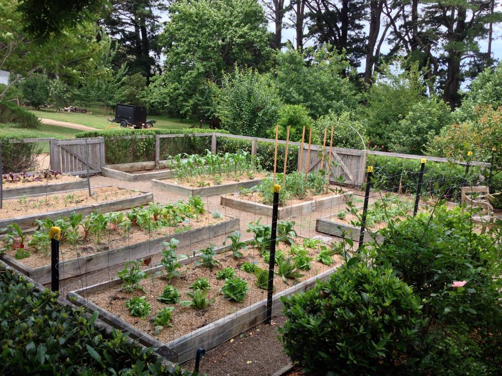 vegetable gardens inspiration southern scapes