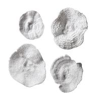 Uttermost Sea Coral Wall Art, Set Of 4 20170 | Bellacor