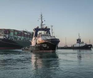 Directorul Animals International: Mii de animale au murit pe navele românești blocate șase zile în Canalul Suez