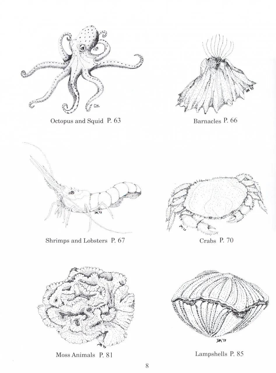 Guide to Marine Invertebrates: Alaska to Baja California