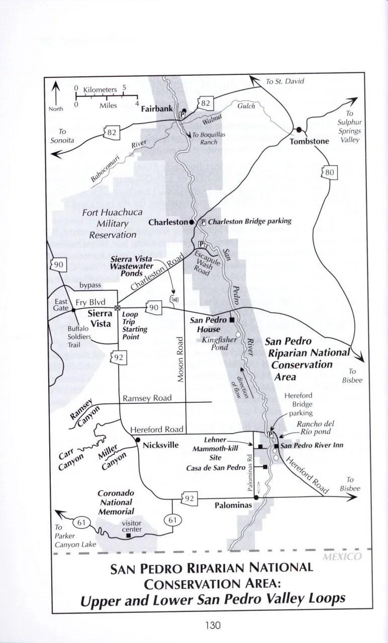 A Birder's Guide to Southeastern Arizona: Richard Cachor