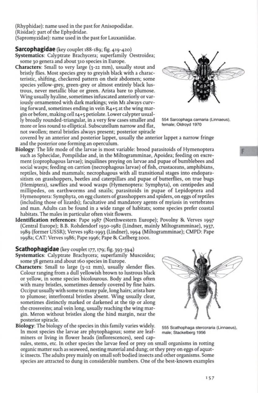 The European Families of the Diptera: Identification