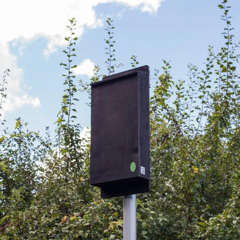 medium resolution of pole mounted maternity bat box