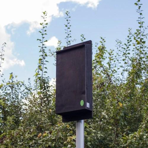 small resolution of pole mounted maternity bat box