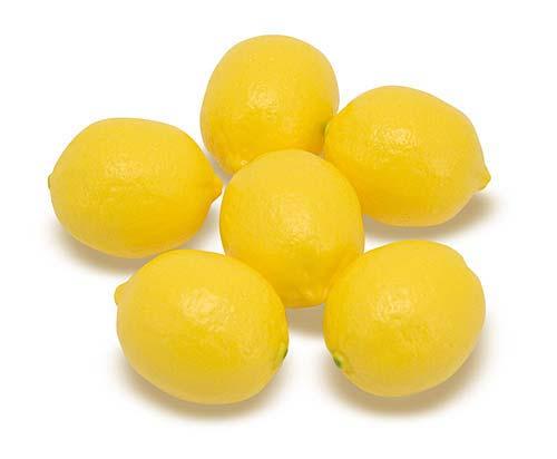 Lemons Play Food