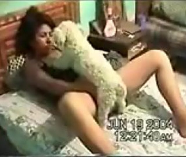 Gentle Animal Porn With Poodle