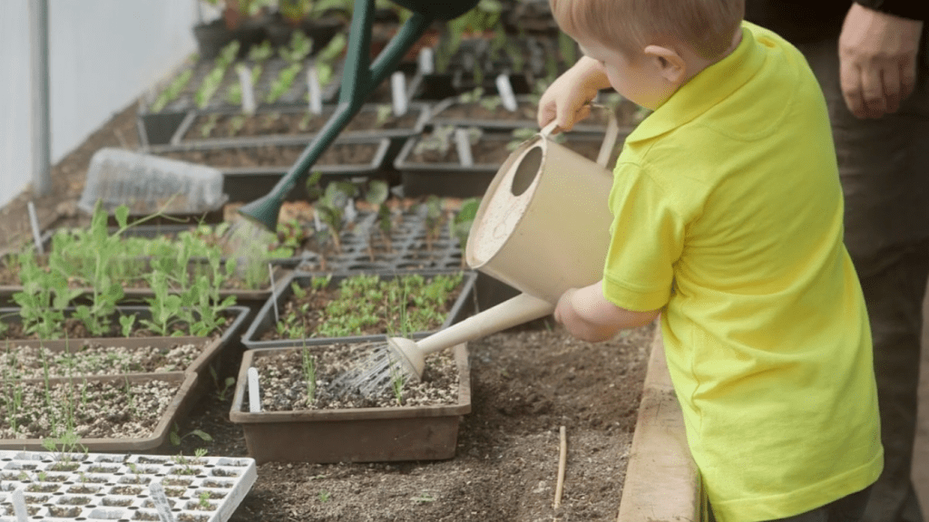 Child with watering can, watering new shoots