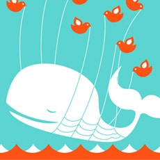 Twitter ne sera jamais grand public - Médiaculture.fr