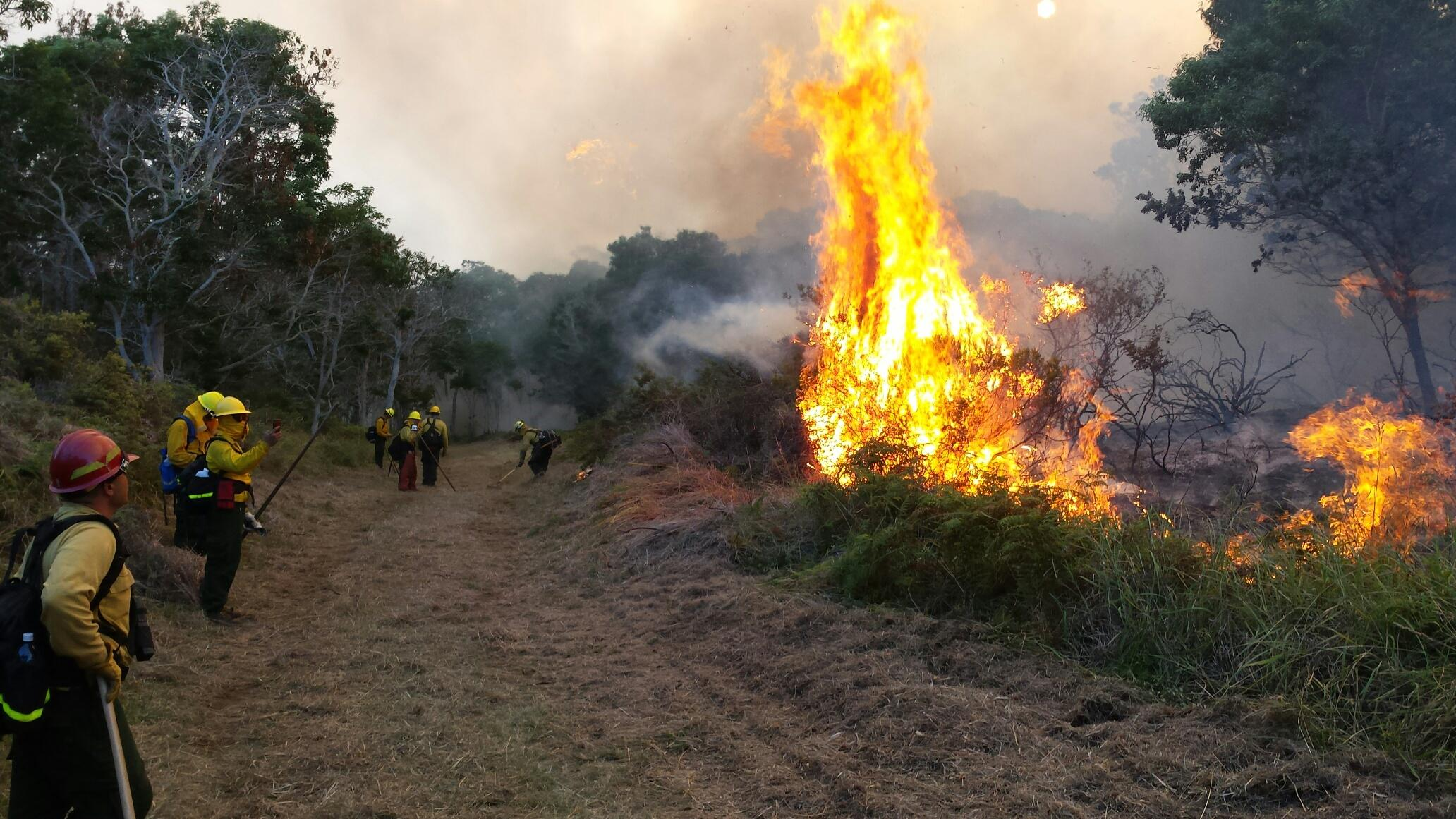 Wildfire In Hawai I Volcanoes National Park Burns More