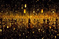 A Look Into The 'Infinity Mirrors' At The Seattle Art ...