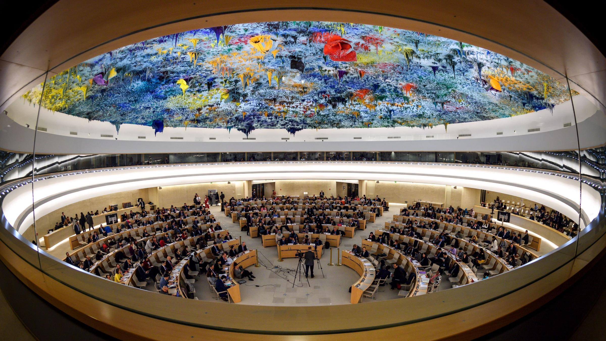 Image result for human rights council