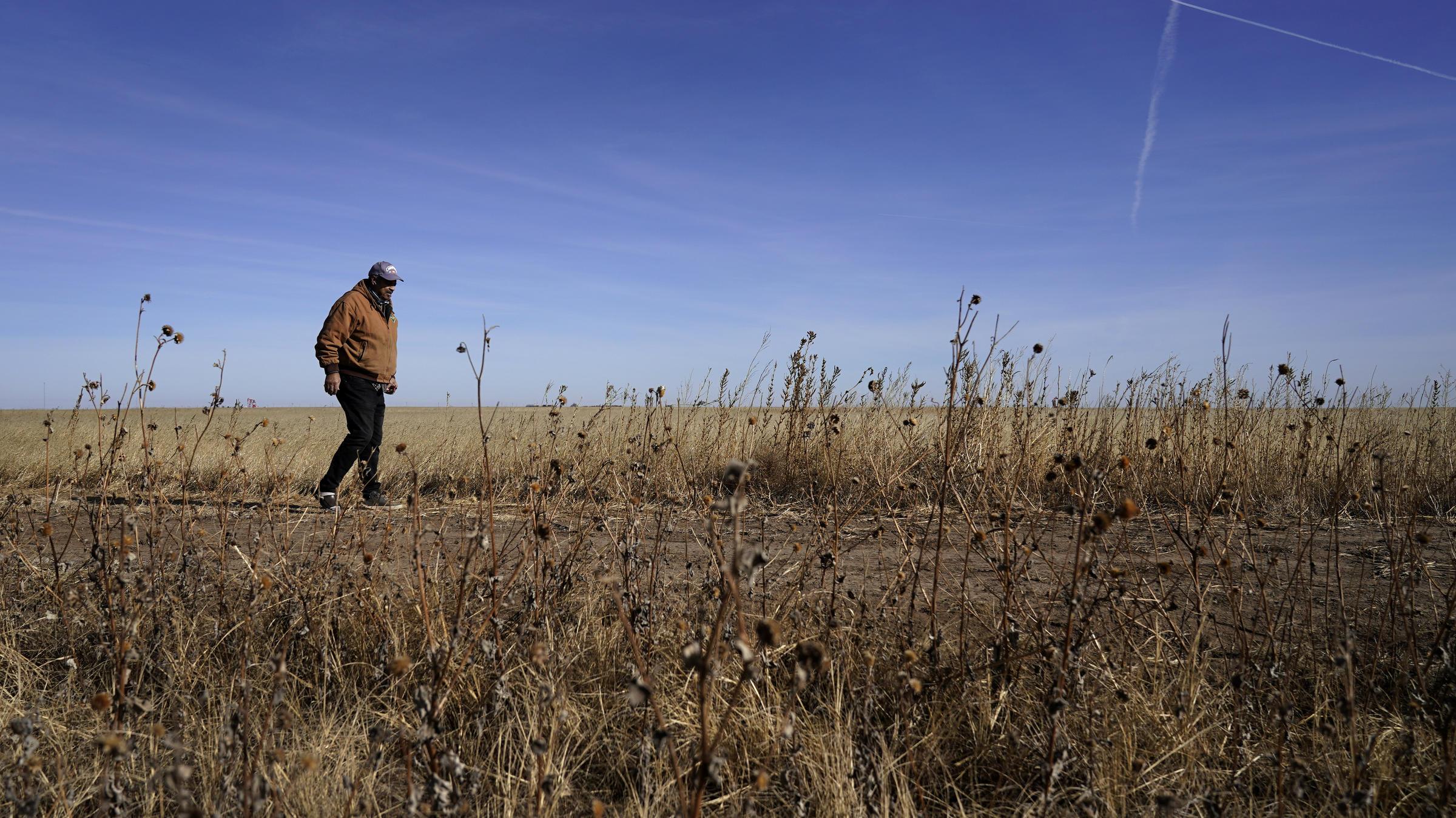 Biden Thinks Debt Relief Will Save Black Farmers From Extinction 6/5/21