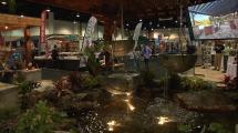 Jacksonville Businessman Celebrates 50 Years Home