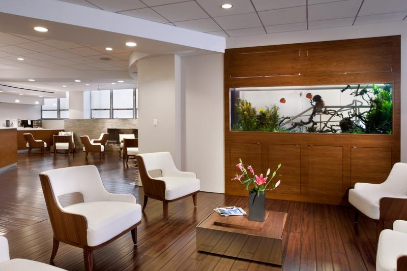 How A Welldesigned Doctor's Office Could Help Patients