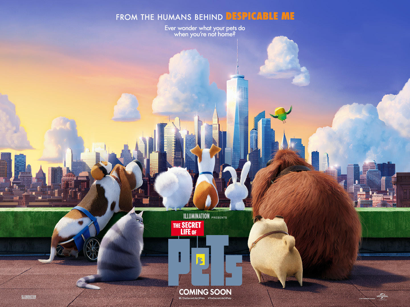 Image result for image, photo, movie poster, secret life of pets