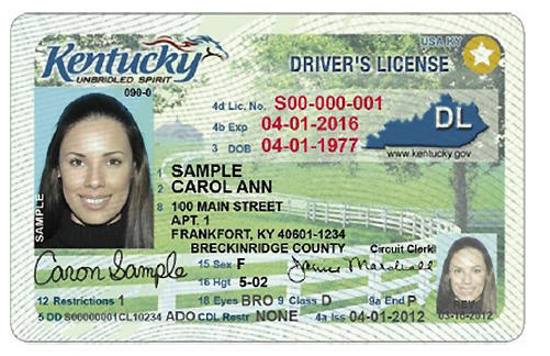 Drivers License Id Template