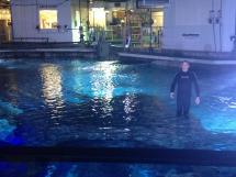Brave Newport Aquarium' Shark Bridge Wvxu