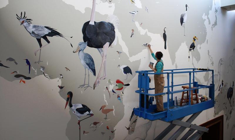 Cornell Mural Celebrates 100 Years of Birding  WXXI News