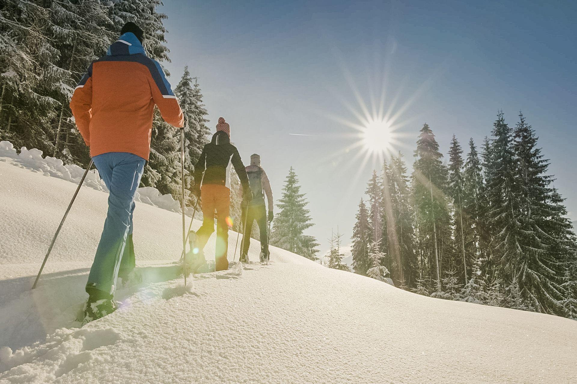 5 Tage Im Sport Und Wellnesshotel Held Im Zillertal Ab 393