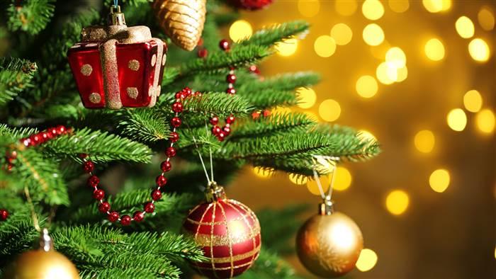 Showcase / julavslutning