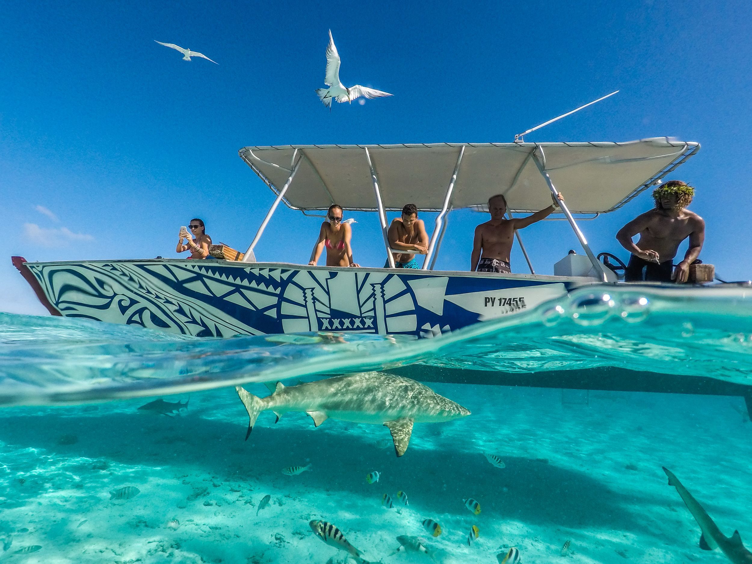 Top 10 Things To Do In Bora Bora From Au 116 Activities