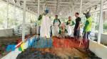Proses pembuatan pupuk organik fine compost di Desa Wunduwatu