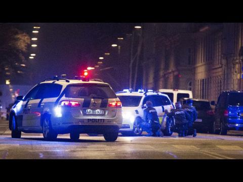 Deuxième fusillade meurtrière devant une synagogue de Copenhague