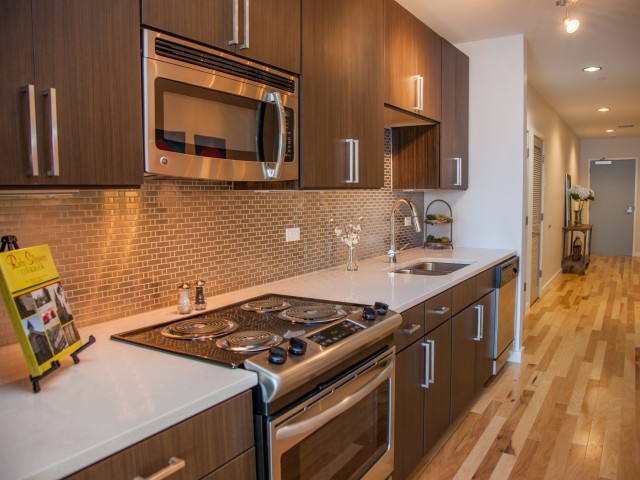 Luxurious Downtown New Orleans Apartments for Rent  The