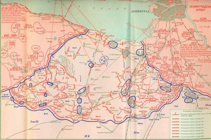 Красносельско-Ропшинская операция. 14-30 января 1944 года