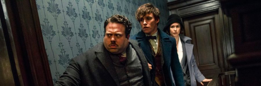"Copyright: © 2016 WARNER BROS ENTERTAINMENT INC. ALL RIGHTS RESERVED Photo Credit: Jaap Buitendijk Caption: (L-r) DAN FOGLER as Jacob, EDDIE REDMAYNE as Newt and KATHERINE WATERSTON as Tina in Warner Bros. Pictures' fantasy adventure ""FANTASTIC BEASTS AND WHERE TO FIND THEM,"" a Warner Bros. Pictures release."