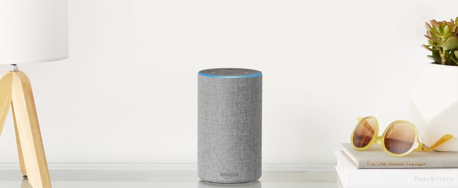 Amazon Echo Light Gray