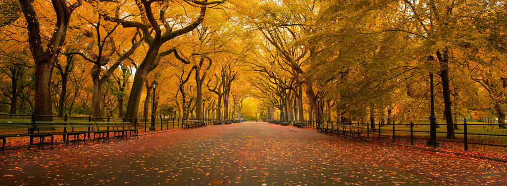 8 Must-See Central Park Film Locations