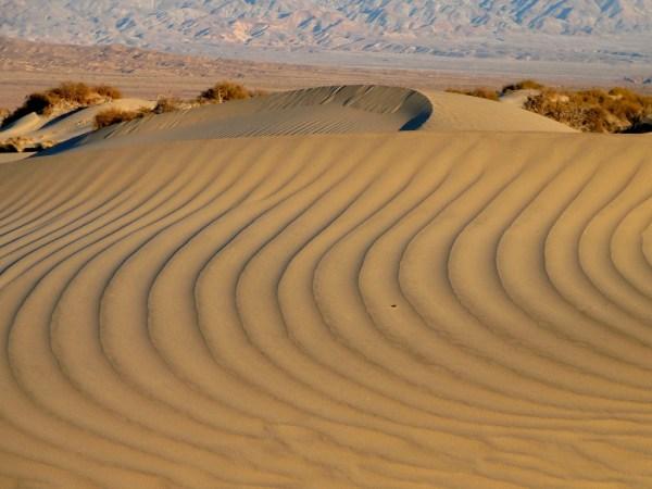 Mesquite Flat Dunes / National Park Service