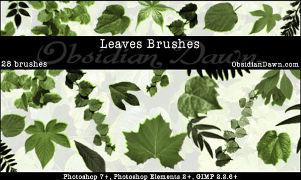24 Stylish And Natural Photoshop Brush Collections Media