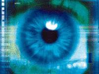 iris scan database of children forms
