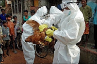 indonesia's health minister accuses US of bird flu bioweapon conspiracy