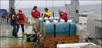 climate 'fix' could poison sea life