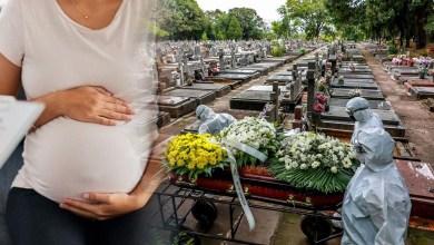 البرازيل تدعو النساء لتأجيل الحمل